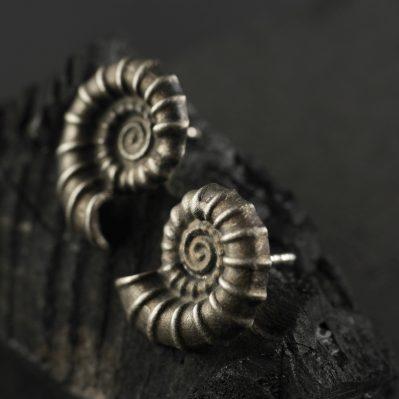 (12044) Ammonit Ohrstecker