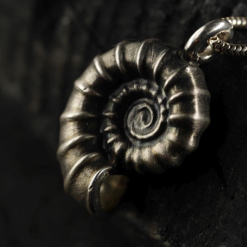 (12046) Ammonitanhänger