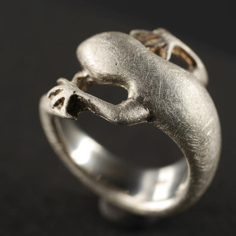 (16020) Silberring Gekko